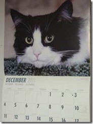 This was my calendar in 2011.