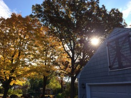 The best season in New England