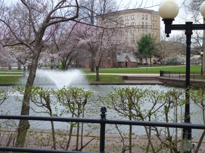 It must be spring; the fountains are on in Hartford.