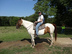 My horse for the tour - Diamond