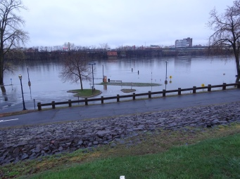 The CT River is overflowing a bit with some spring rain.