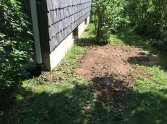 Once this settles, I'll add a little topsoil and plant some grass seed.