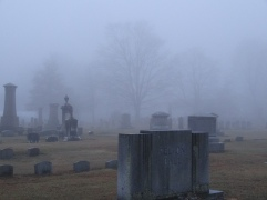 Fog at Elm Grove