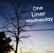 One Liner Wednesday