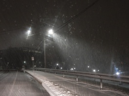 I pulled over prior to checking out Great River Park. The roads weren't bad yet but it was snowing pretty hard.