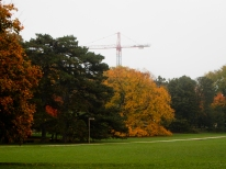 Fall colors, fog and a crane. Yeah, I had to include this one.