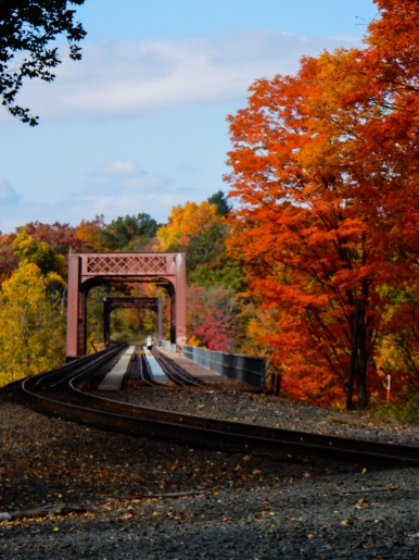 This is the railroad bridge that carries my AMTRAK train across the CT River. This is north of where I board, I've never been across it.