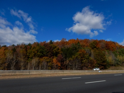 There's a touch of color left on that hill.