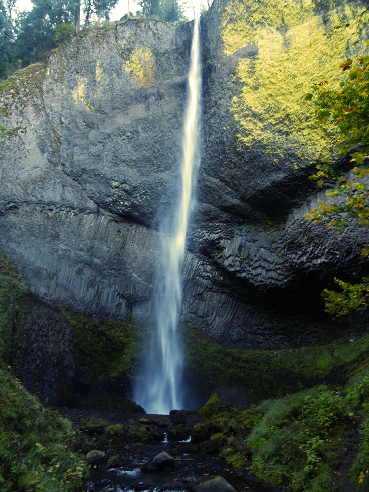 Latourell Falls Loop | Friends of the Columbia Gorge