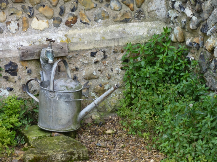 I love this old watering can.