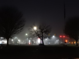 The view from Dunkin Donuts. Bare trees and fog.