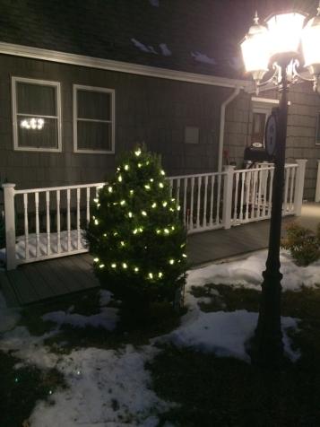 White (ish) Christmas