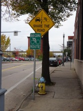 "I'm not sure why these are tagged with ""count"" but I like the bike lanes in Pittsburgh."