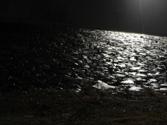 The rocks in the levee above Great River Park have a light coat of wet.