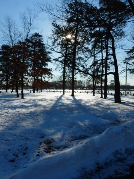 Maddie's park
