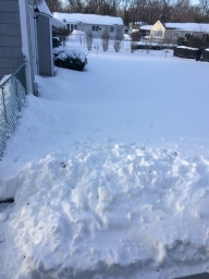 The snow blower is in the shed. Back - by - the - fence.