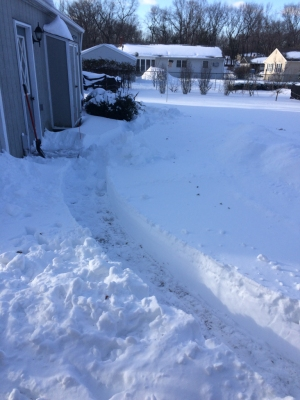This was the first pass with my snow blower after the mid-month storm.