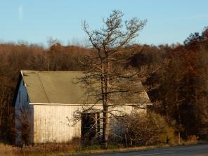 Roadside barn on the way home.