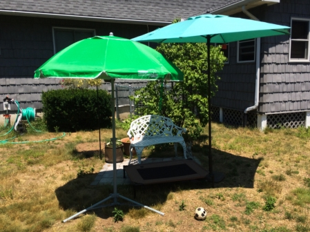 The patio as planned included the tall umbrella and the bench, not the cot and the little umbrella.