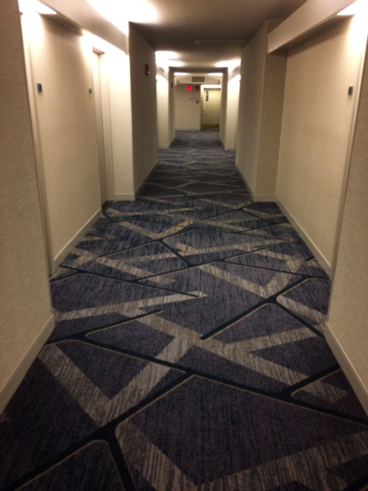 This floor was recently renovated. The carpet is a little hard to take.
