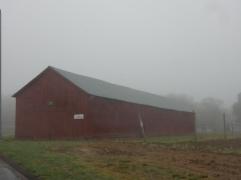 Foggy start
