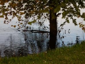 Great River Park flooding