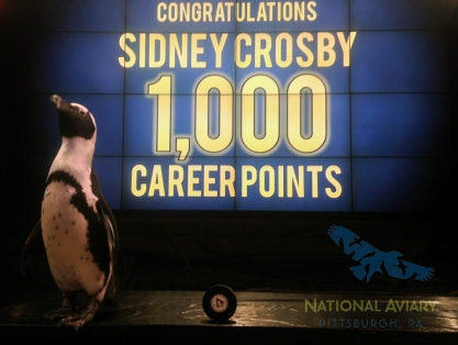 The Penguin's name is Sidney