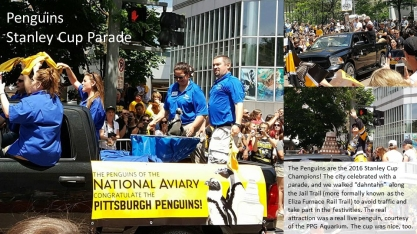 The Penguins at the Aviary have a good working relationship with the hockey team.
