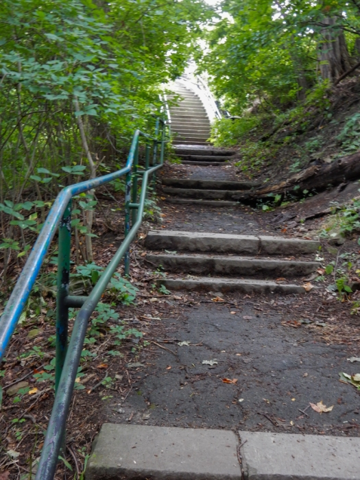This is the last set of stairs on our return trip.