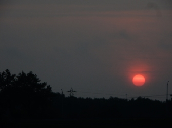 This was the day after the eclipse. I think the sun wanted to make a statement.