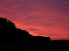This is one of those colorful skies that will be gone in 30 seconds.