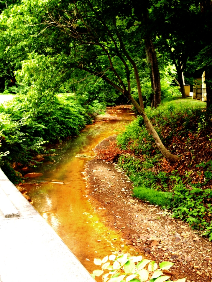 Chartiers Creek - this runs past the house where I lived until I was about 10.