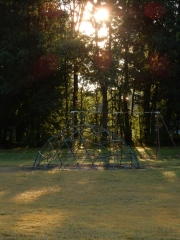 Monkey bars and swings - the sights of summer.
