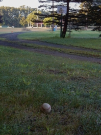 This was a long foul ball. After trying to go artistic, I tossed it back on the field.