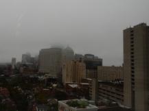 The Boston skyline is pretty - trust me.