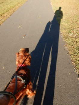 Long shadows happen around the equinox.