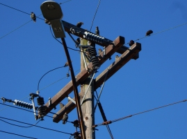 These are the birds and the power lines I used for the badge - they are on this pole, every time we walk.