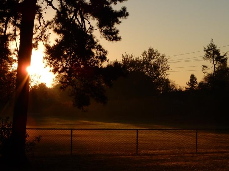 Autumn morning sunshine cutting through the mist
