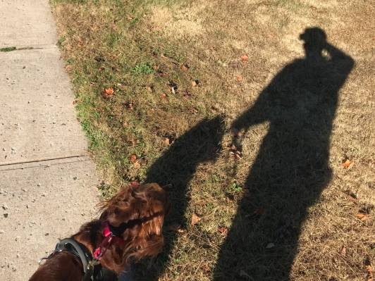 """""""Is that my shadow?"""""""
