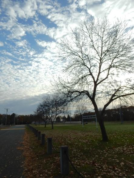 Last Sunday's sky was very pretty.