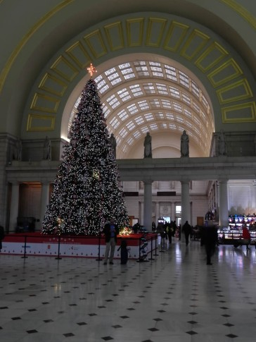 That enormous Christmas tree is dwarfed by the space it's trying to fill.