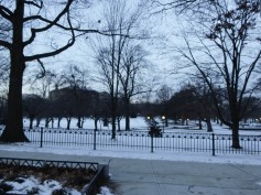 Bushnell Park on a gray day.