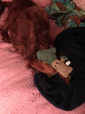 Faith gave Maddie a stuffed broccoli for Christmas