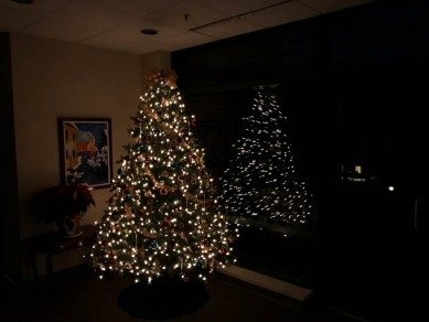 The tree gives a little light at the dark point of the morning routine.