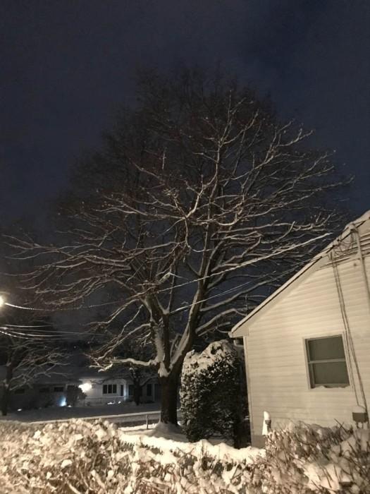 Very sticky snow