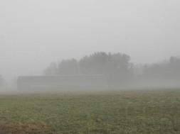 Tobacco barn in a foggy field.
