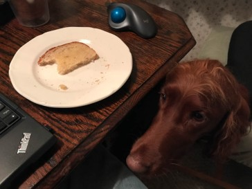 """Um, are you going to finish that toast?"""