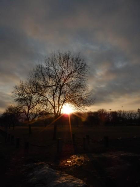 Sunrise over Maddie's park.