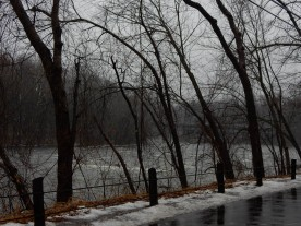 Farmington River, near the bar we visit on Saturdays