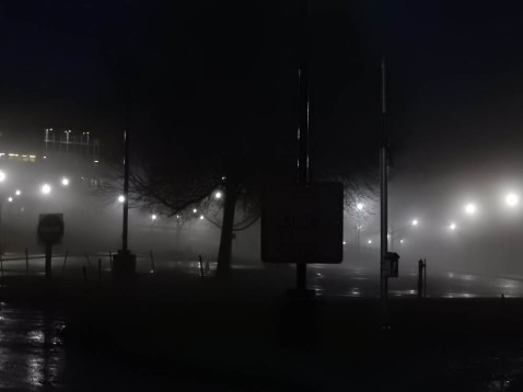Great River Park on a foggy morning